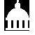 Government service icon
